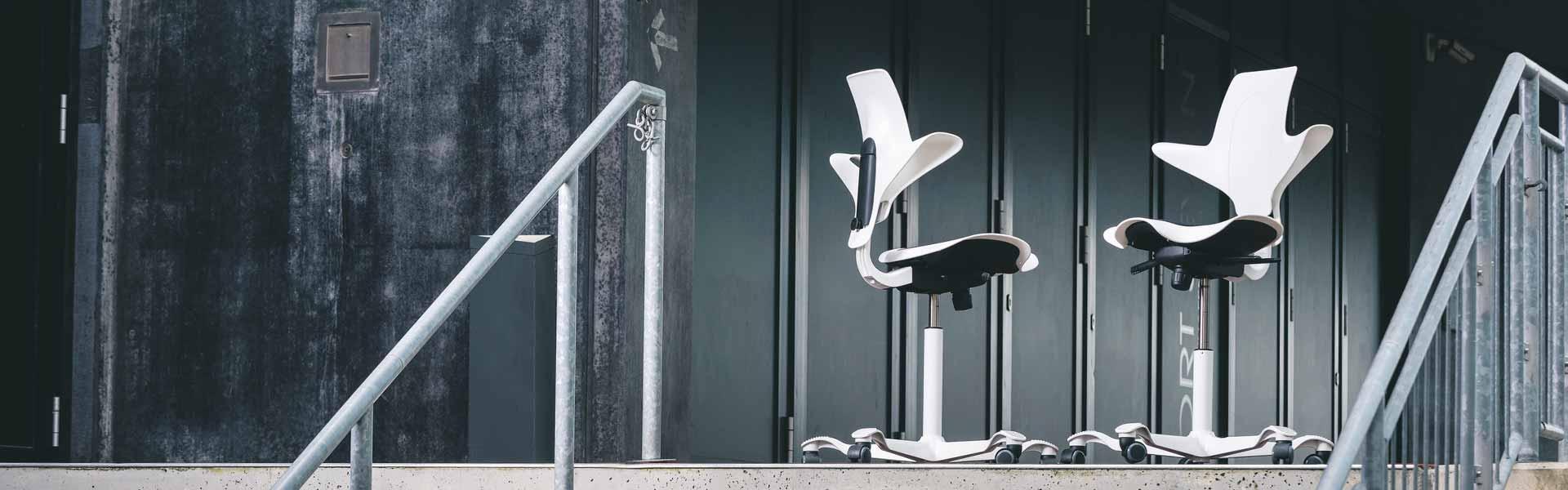 orthop dische ergonomische b rost hle aus berlin home. Black Bedroom Furniture Sets. Home Design Ideas